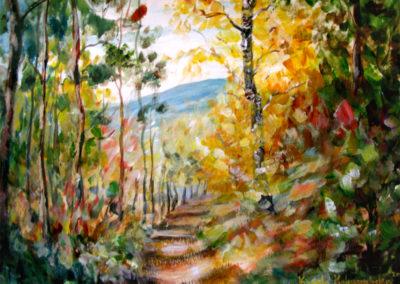 """""""Fall Trail"""" - acrylic on canvas by Kamila Kokoszynska"""