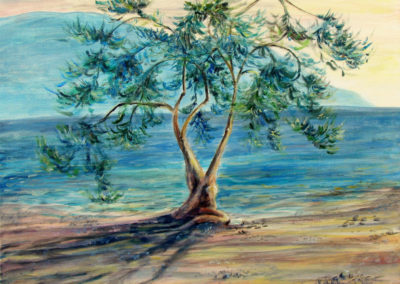 """Olive Tree"" - acrylic on canvas by Kamila Kokoszynska"