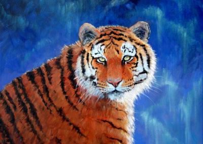 """Peaceful Tiger"" - acrylic painting on canvas by Kamila Kokoszynska"